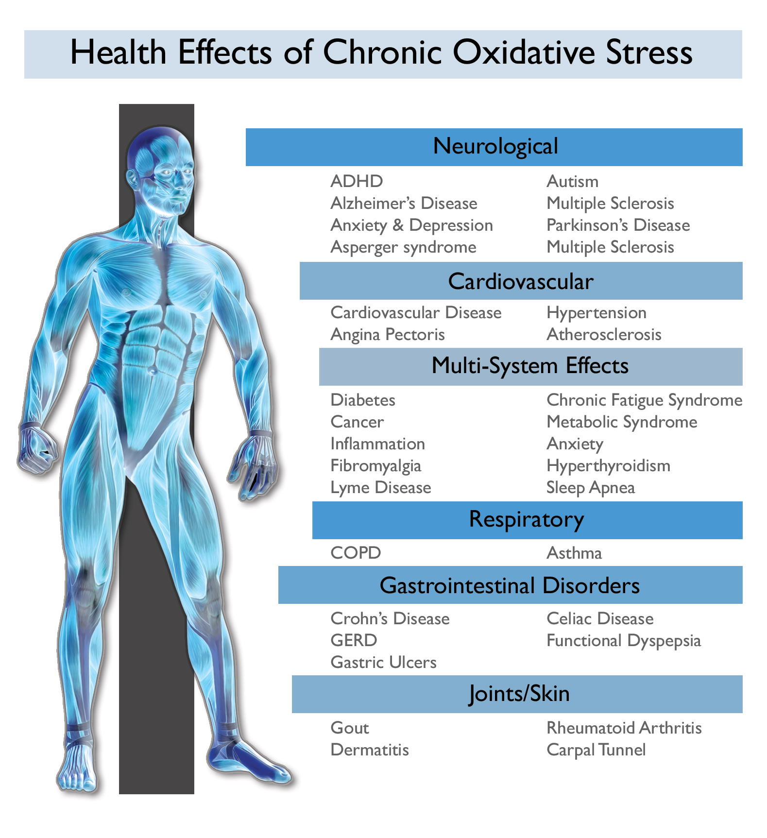 Oxidative Stress and Stress | Best In Corporate Health