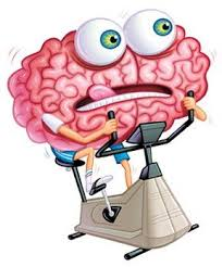 exercise and cognitive functioning Best In Corporate Health